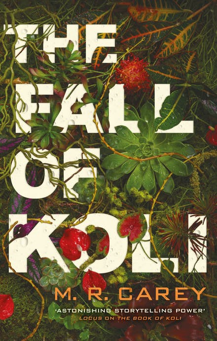 The Fall of Koli by Mr Carey